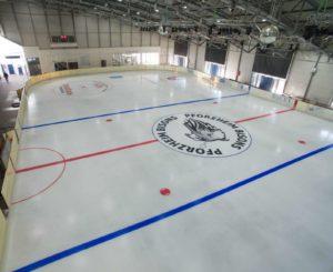 St. Maur-Halle, Eissportzentrum Pforzheim